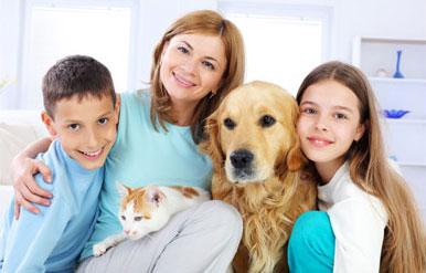 Famille d'accueil Bénévole pour Animaux France et Belgique